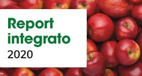 Report Integrato